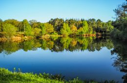 L'étang du Chaperon Rouge - Visiter Brocéliande en Bretagne, une terre de légendes et d'histoire