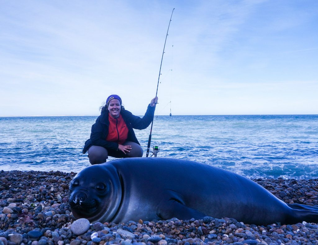 Bébé phoque à Punta Ninfas à Puerto Madryn - Patagonie hors des sentiers battus - Patagonie argentine maritime