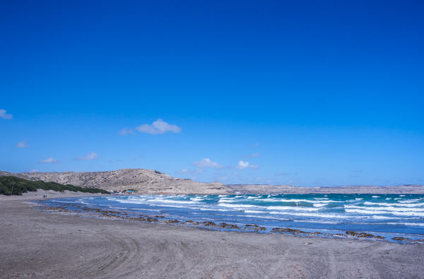 Punta Ninfas à Puerto Madryn - Patagonie hors des sentiers battus - Patagonie argentine maritime