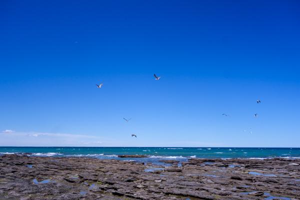 Las Grutas - Patagonie hors des sentiers battus - Patagonie argentine maritime