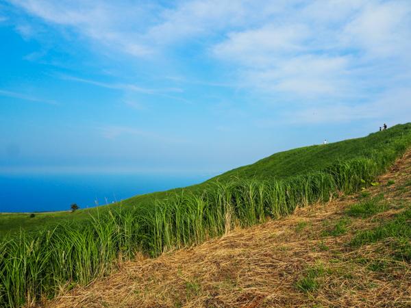 Mont Omuro à Izukogen - L'autre Japon sur la Péninsule d'Izu au Japon