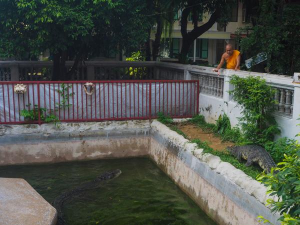 Temple aux crocodiles à Bangkok - Visiter Bangkok: le guide pratique complet pour un premier voyage en Thaïlande et à Bangkok