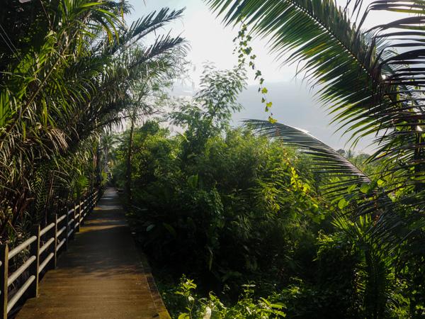 Quartier de Bang Kachao - Où dormir à Bangkok - Visiter Bangkok: le guide pratique complet pour un premier voyage en Thaïlande et à Bangkok