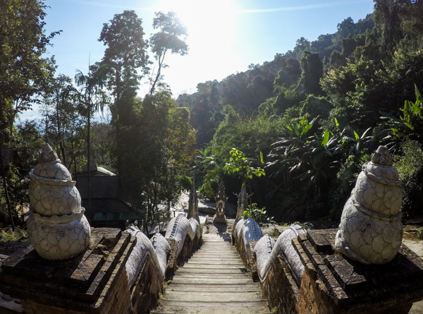 Randonnée dans la jungle à Chiang Mai - Visiter Chiang Mai : le guide pratique ultime du voyage lent et nomade à Chiang Mai en Thaïlande
