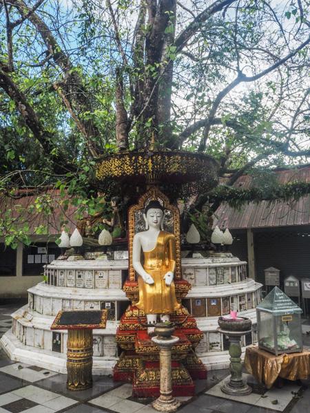 Au temple de Doi Suthep - Visiter Chiang Mai : le guide pratique ultime du voyage lent et nomade à Chiang Mai en Thaïlande