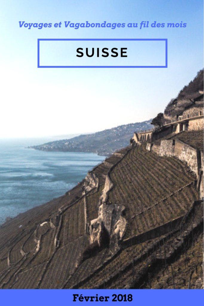 Vivre en Suisse pendant un mois en Housesitting - Voyages et Vagabondages au fil des mois - Bilan mensuel de voyage - Février 2018