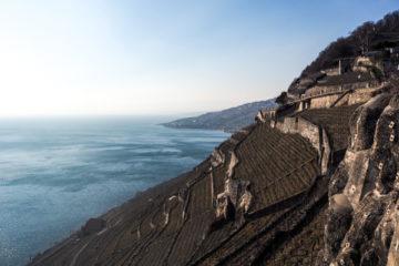 Les vignes du Lavaux dans le canton de Vaud en Suisse - Voyages et Vagabondages au fil des mois - Bilan voyage mensuel - Février 2018 en Suisse