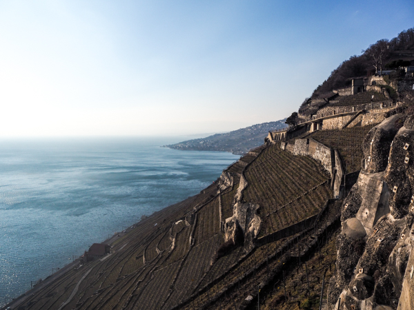 The vineyards of Lavaux in the canton of Vaud in Switzerland - Trips and Vagabondages over the months - Bilan voyage monthly - February 2018 in Switzerland