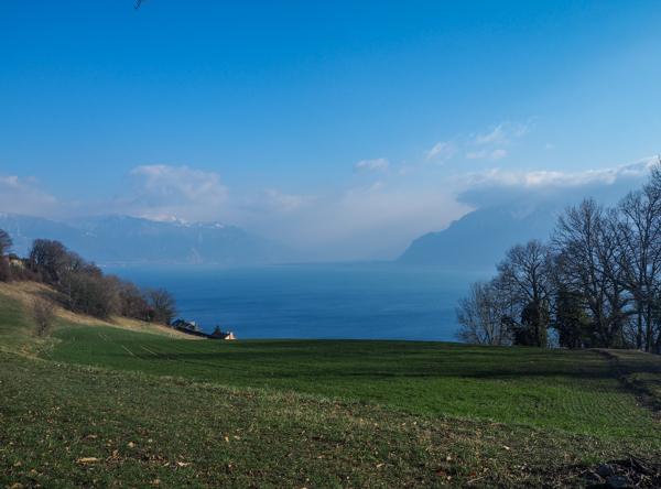 Vue sur le Lac Léman en Suisse depuis les Vignes du Lavaux