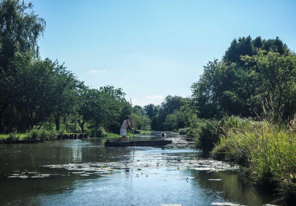 Visiter les marais de Bourges en barque plate, une visite nature insolite en Berry - Quelques idées de week-end insolite, nature et déconnexion en Berry pour se ressourcer lors d'un voyage en France: hébergements insolites, activités uniques et détente, moments de nature et de déconnexion pour se retrouver et revenir à l'essentiel.