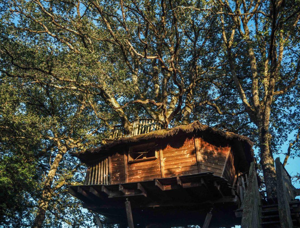 Une cabane dans les arbres - Les Cabanes de Chanteclair - Quelques idées de week-end insolite, nature et déconnexion en Berry pour se ressourcer lors d'un voyage en France: hébergements insolites, activités uniques et détente, moments de nature et de déconnexion pour se retrouver et revenir à l'essentiel.