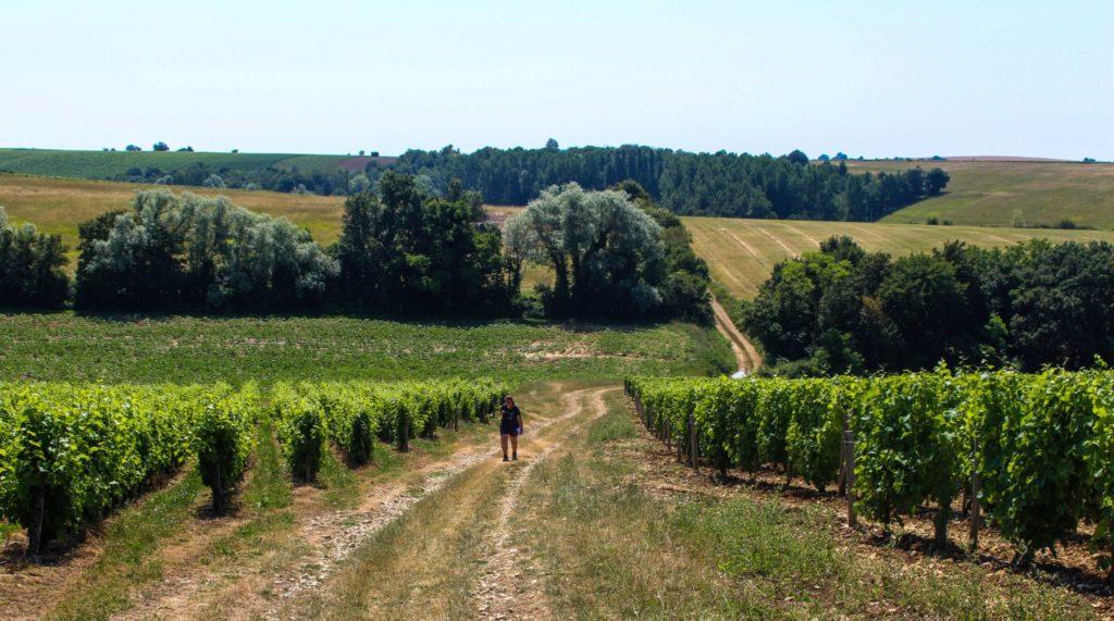 Quelques idées de week-end insolite, nature et déconnexion en Berry pour se ressourcer lors d'un voyage en France: hébergements insolites, activités uniques et détente, moments de nature et de déconnexion pour se retrouver et revenir à l'essentiel