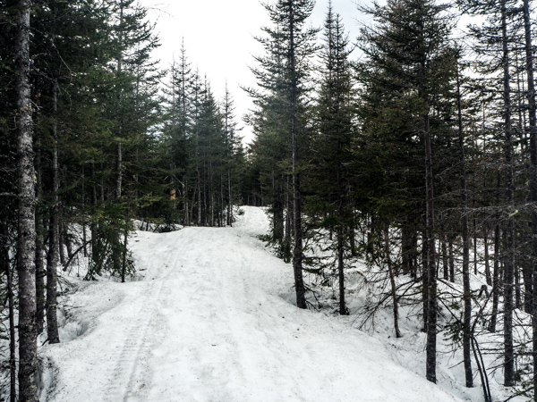 Quand partir au Canada? Voyager au Canada et au Québec hors saison - Le printemps au Canada