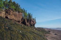 Visiter Hopewell Rocks dans la Baie de Fundy au Nouveau-Brunswick - Les grandes marées et les grandes émotions - Canada - Visiter le Canada en Français