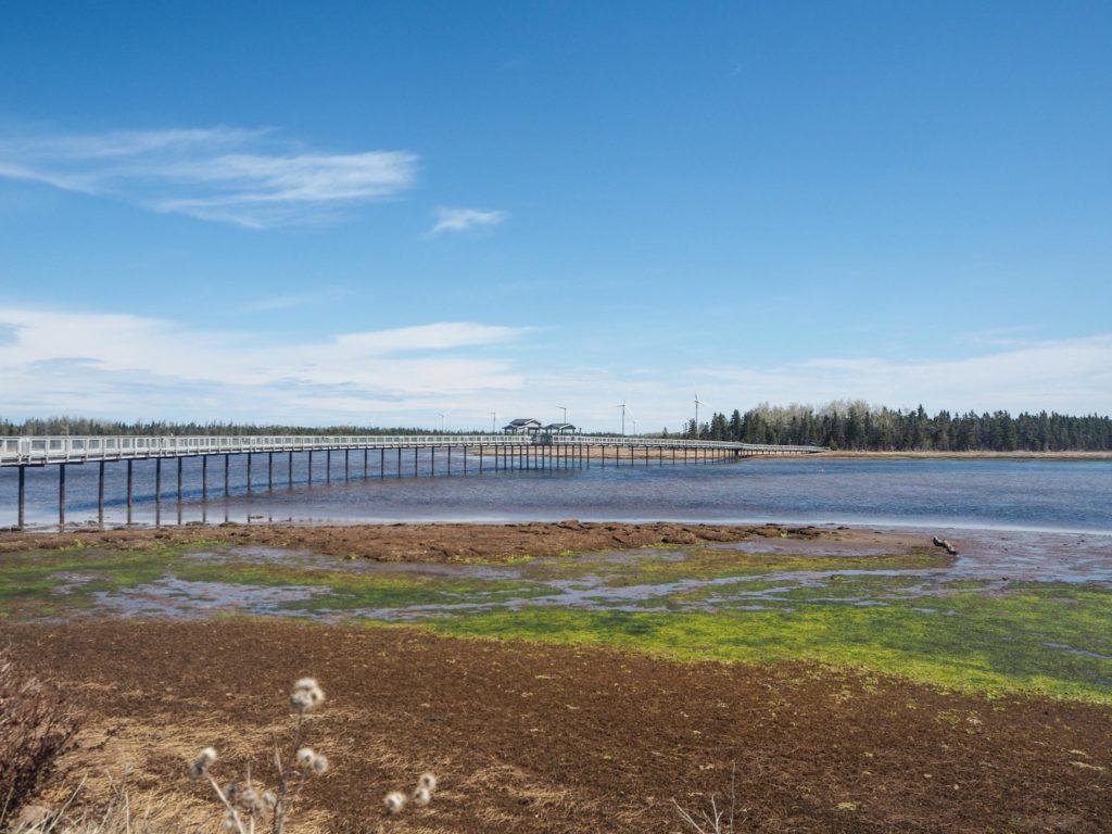 Road-trip au Nouveau-Brunswick: à la découverte du Canada hors des sentiers battus