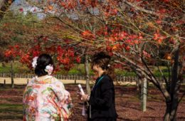Koraku-en, le jardin japonais à Okayama - Visiter Okayama au Japon, une ville au coeur de la campagne japonaise