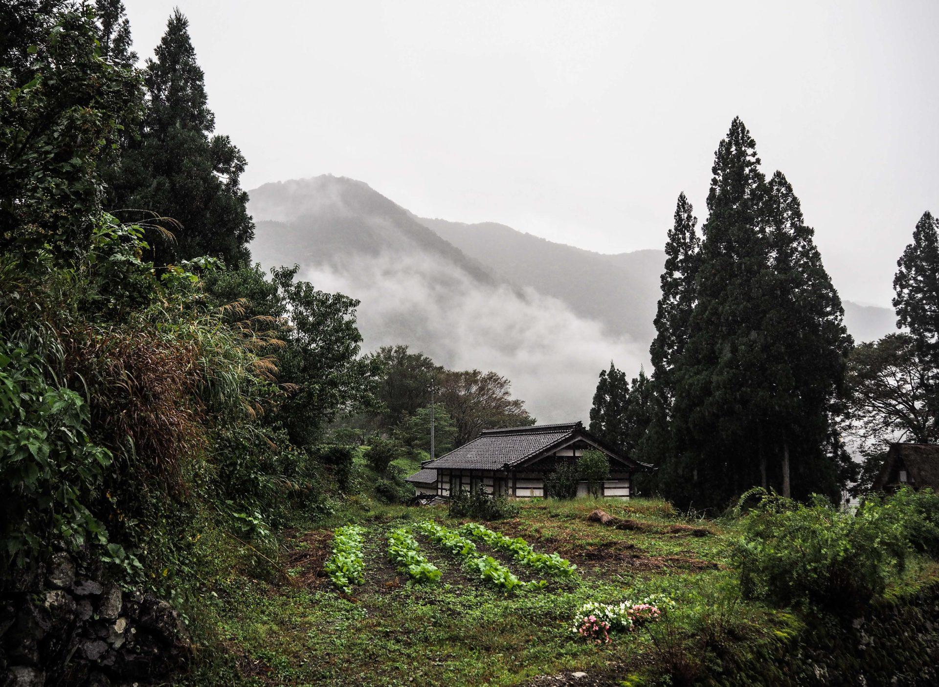 Le village traditionnel de Gokayama - Préfecture de Toyama, porte d'entrée vers les Alpes Japonaises - Voyager au Japon hors des sentiers battus